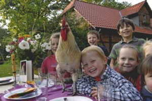 Kindergeburtstag auf dem Tierhof in Bokelberge