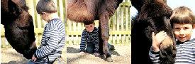 Kinder - Tiere - Kommunikation / Corinna Michelsen
