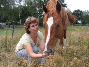 TierVital - Tierheilpraxis von Corinna Michelsen